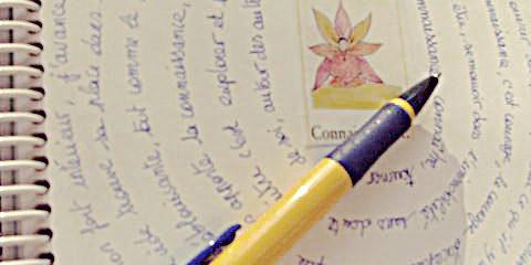 journal-creatif-annecy-002
